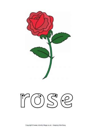 rose word tracing