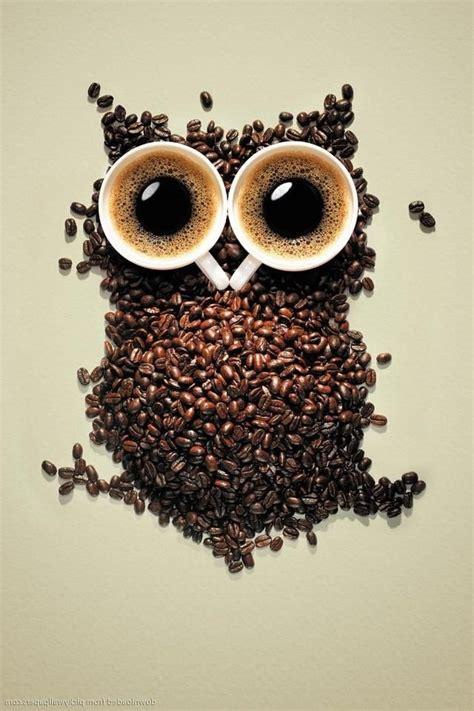 coffee owl wallpaper gallery