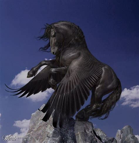 the black foal of anok all grown up perch worth1000 contests the guardian herd book series