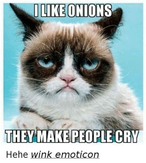 Crying Cat Meme - crying cat meme 28 images crying cat imgflip crying cat on tumblr sad cat meme www