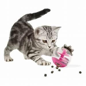 Friandise Pour Chat : jouet chat rose friandises achat vente jouet ~ Melissatoandfro.com Idées de Décoration