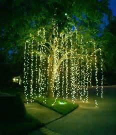 hanging christmas lights on outside trees myideasbedroom com