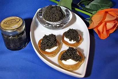 Caviar Paddlefish Osage Company Farm Missouri Inc