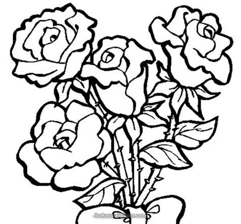 roses coloring pages  adults