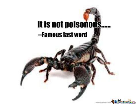 Scorpion Meme - image gallery scorpion meme