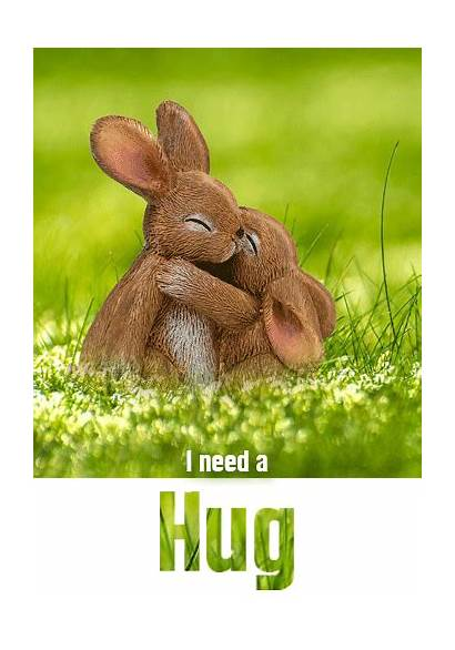 Hug Bunny Hugs Send Cards