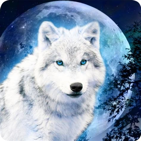 Anime Wolf Wallpaper Android by Galaxy Wolf White Wolf Magi 173 C Effect Lwp Android