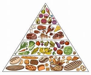 Food Pyramid Stock Illustrations  U2013 4 222 Food Pyramid