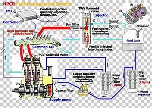 Diagram  Race Engines Fuel System Diagram Full Version Hd