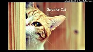 Sneaky Cat - YouTube