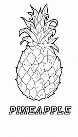 Pineapple Coloring Template Adult Apple Adults Stitch Coconut Getdrawings sketch template