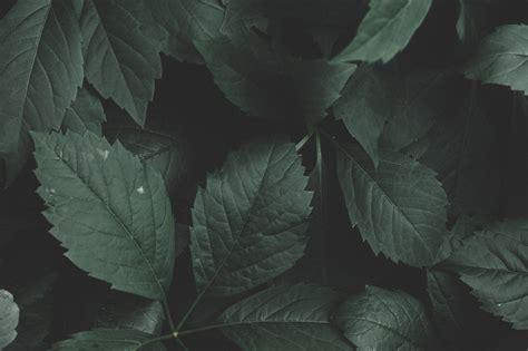 images background close  color colour dark