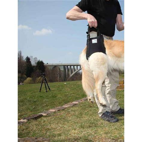 pfaff gehhilfe tragehilfe fuer hunde hinterlaeufe