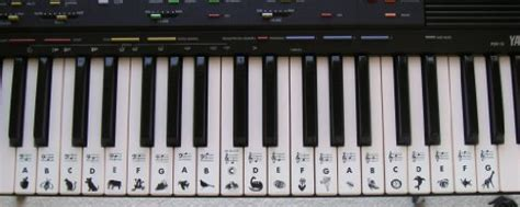 Gs1+3 Piano Key Finder Stickers