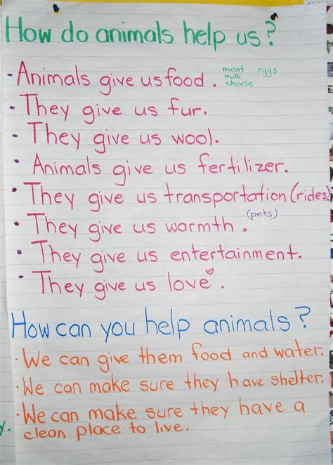how do animals help ms brown s classroom needs of living things
