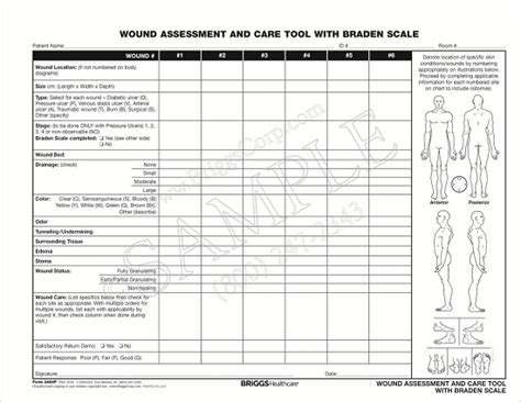 briggs healthcare 3466p wound assessment and care tool