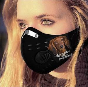 Life Is Better With A Dachshund Activated Carbon Pm 2 5 Fm
