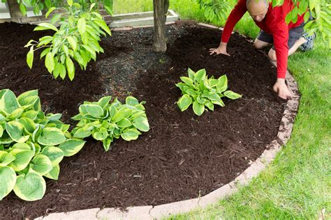 lawn edging ideas dirt cheap kitchener waterloo hamilton