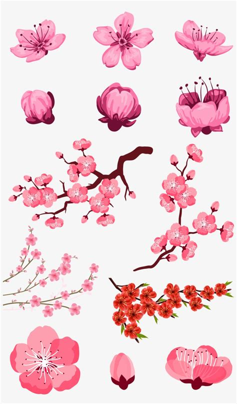Adobe Download Pink Peach Transprent Png Free Flores De