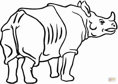 Rhino Rhinoceros Coloring Indian Pages Drawing Outline