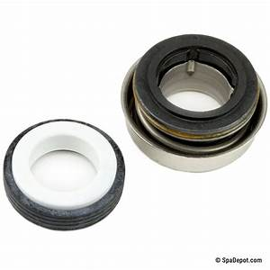 Hot Tub Pump Seal For Acura    Jandy Pumps Ps