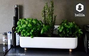 Jardiniere Interieur : jardini re d 39 int rieur divers objets d coratifs ~ Melissatoandfro.com Idées de Décoration