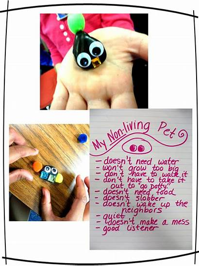 Living Non Nonliving Grade Need Worms Science