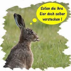 Bild 2 Aus Beitrag Kleine Osterhasengeschichte Aus Thönse