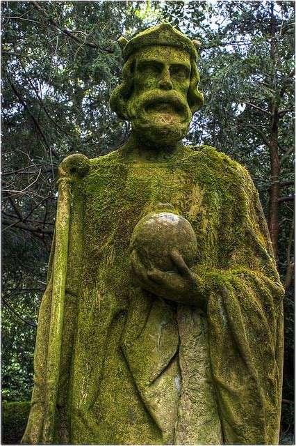 25 best moss for century 48 best images about all overgrown by cunning moss on