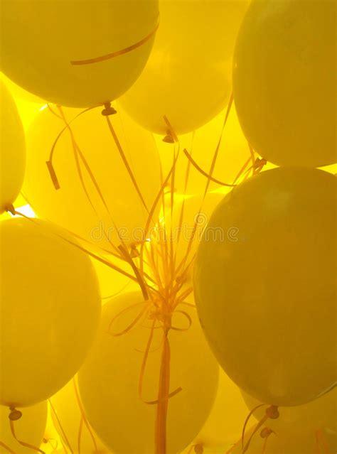 yellow balloons stock photography image