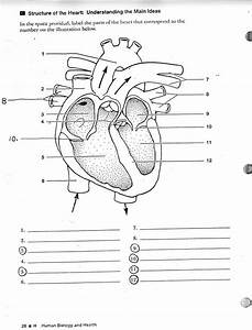 Human Anatomy Labeling Worksheets Tag Label The Heart Diagram Worksheet Human Anatomy Diagram