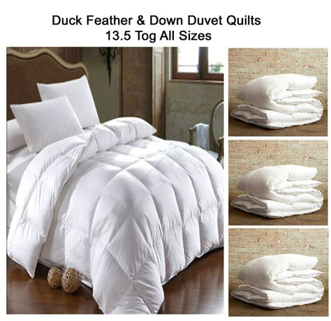 Duvet Feather by Duck Feather Duvet Quilts 13 5 Tog Single