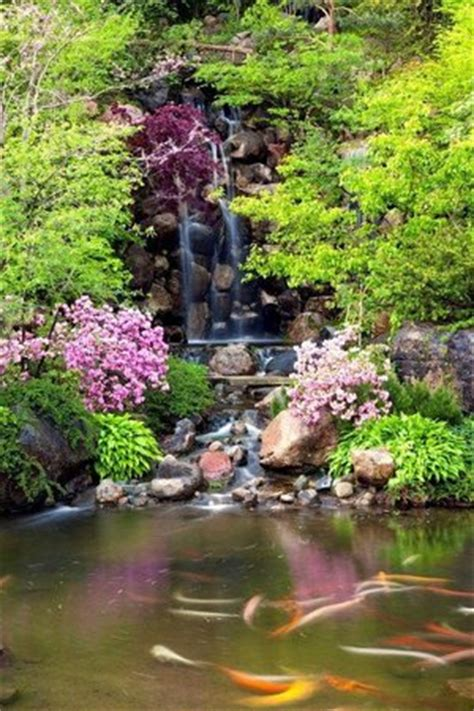 japanese gardens rockford il top tips before