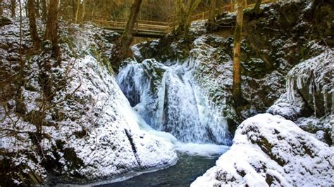 Landscape Nature Waterfall Snow Trees Forest Scenic River Stream Rocks Water Bridge
