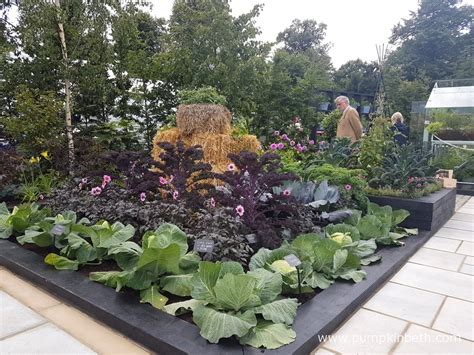 the kitchen garden juliet sargeant and the rhs kitchen garden pumpkin beth