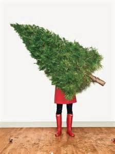 christmas tree trimming christmas pinterest