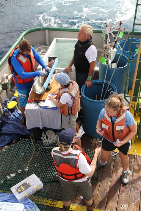 fish pulley ridge grouper entire working team logs noaa florida connectivity ecosystem coral keys genetics mercury samples basic