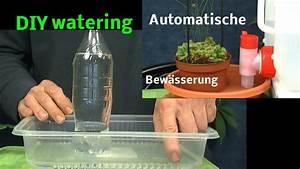 Was Kann Man In Ein Gewächshaus Pflanzen : automatische bew sserung von pflanzen diy watering plants ~ Lizthompson.info Haus und Dekorationen