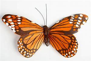 6 U0026quot  Feather Monarch Artificial Butterfly