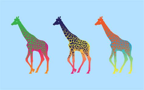 Colourful Animal Wallpaper - giraffes colorful animals wallpapers hd desktop and