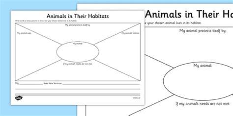 habitat worksheets year 1 animals in their habitats worksheet science year 1