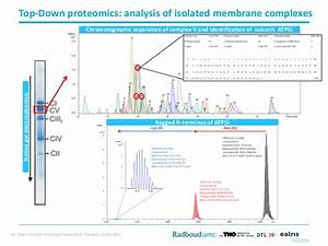 2017 04-03 Proteomic Forum 2017, Potsdam, Alain van Gool