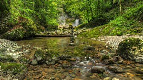 Beautiful Outdoor Wallpaper by Green Water Nature Trees Outdoors Rivers Forest Wallpaper