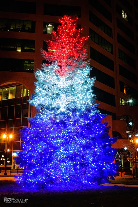 white christmas tree with blue lights 1000 images about red blue christmas tree 39 s on