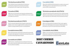 10 Best Cannabinoids Images On Pinterest
