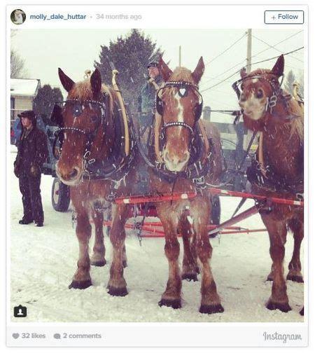 ny sleigh rides upstate places newyorkupstate chittenango