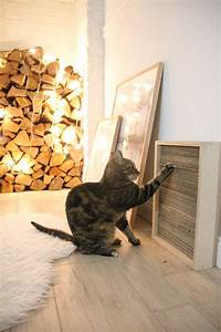 Gemüse Für Katzen : diy katzen kratzbrett selber machen kratzbrett ~ Watch28wear.com Haus und Dekorationen