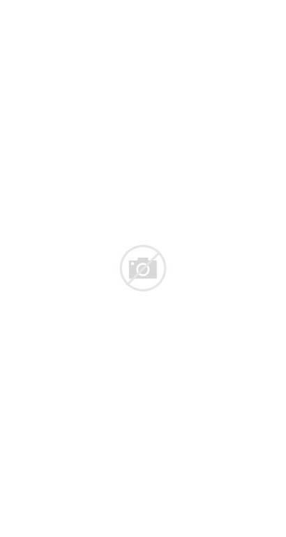 Bear Dancing Kocak Hewan Tanpa Leher Dia