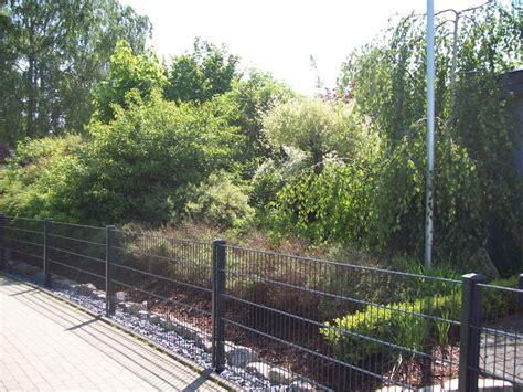 Sichtschutz Garten Forum by Sichtschutz Aber Was Garten Gartenforum De