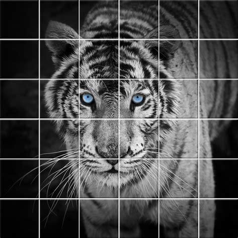 adesivi decorativi per piastrelle adesivi follia adesivo per piastrelle tigre
